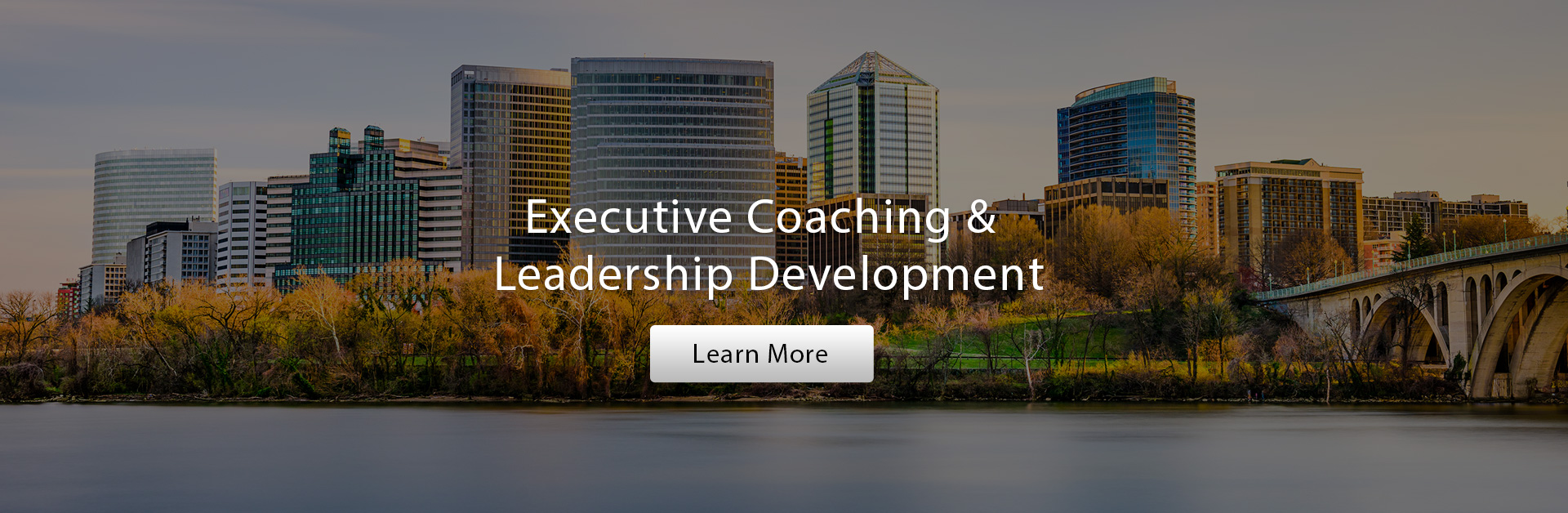 Executive Coaching & Leadership Development